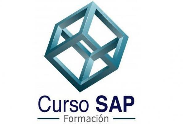Curso SAP FI/CO Funcional (Usuario experto)>