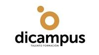 Fundamentos del plan de marketing en internet. Cantabria>
